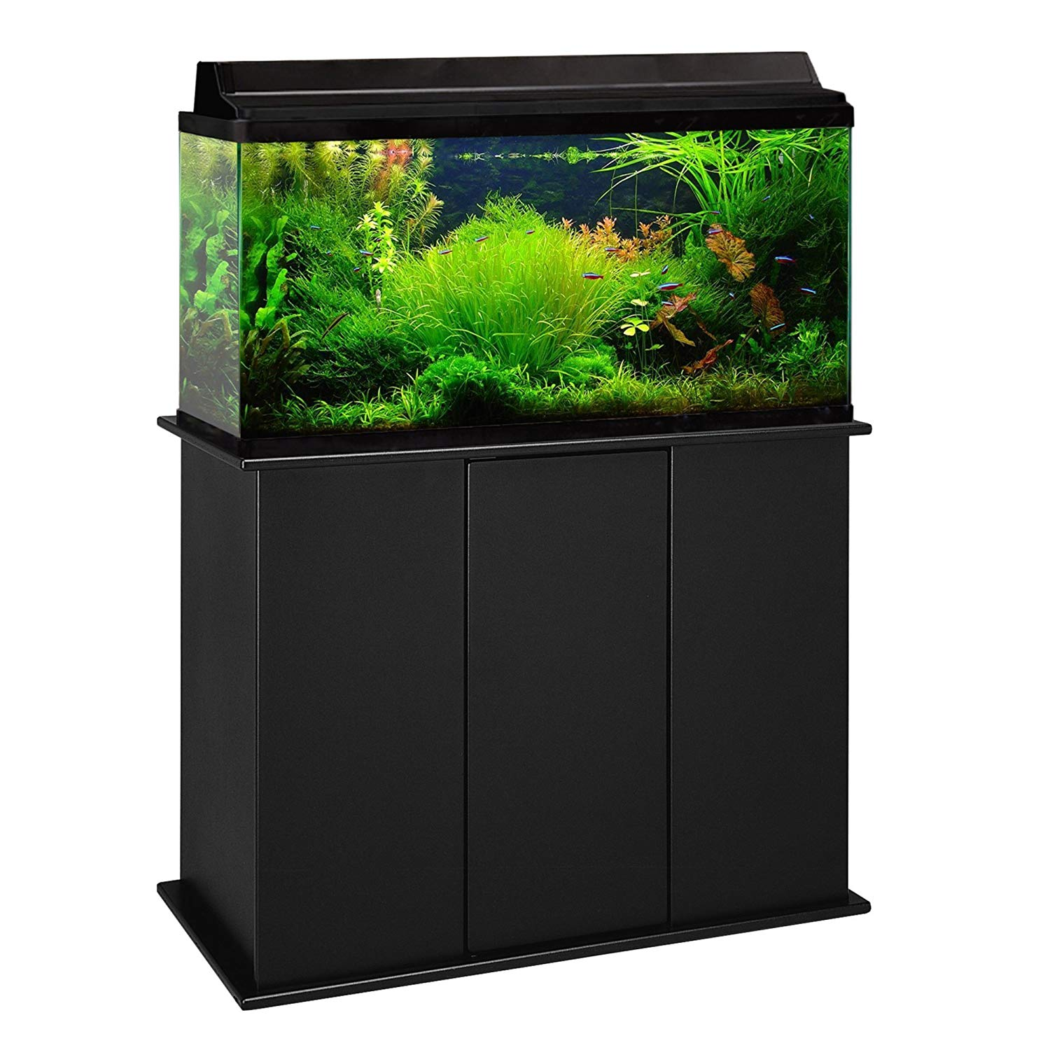 Easy Steps To Setting Up Your Own Aquarium At Home
